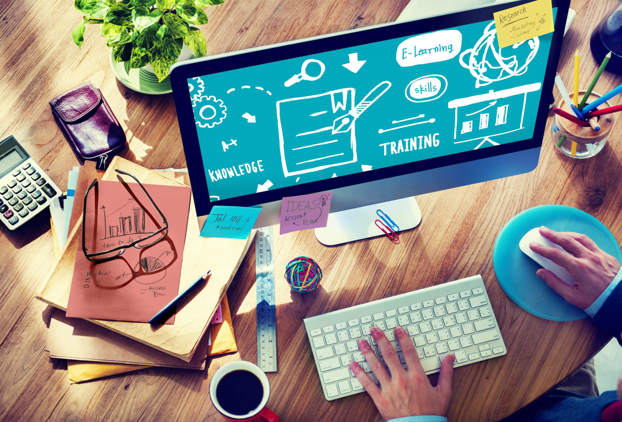 Software im KMU 2019